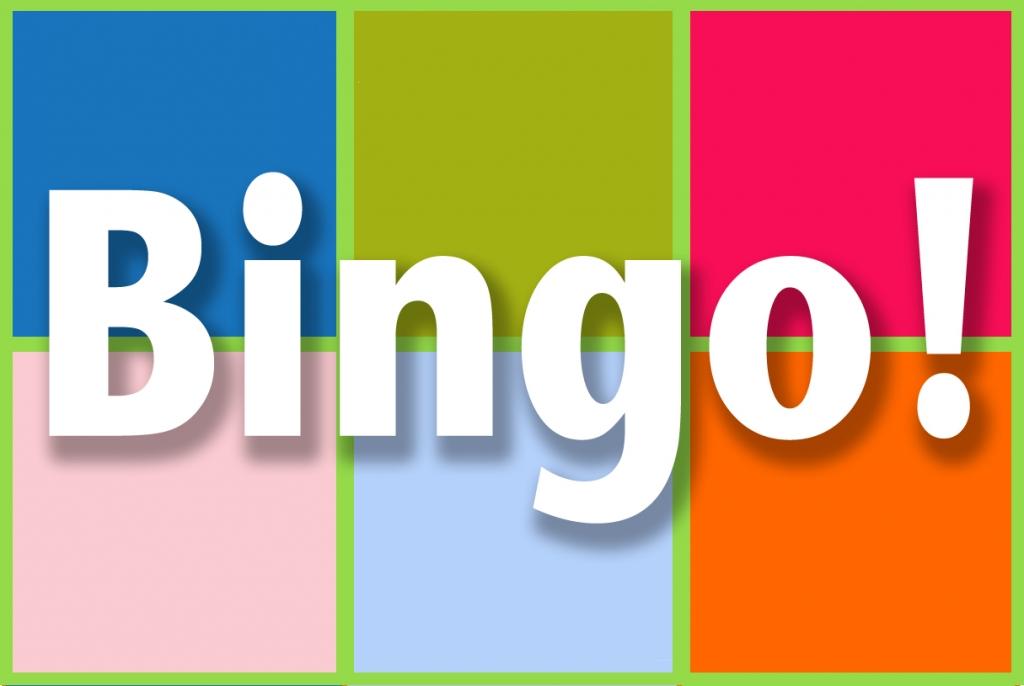 lexique et expressions au bingo